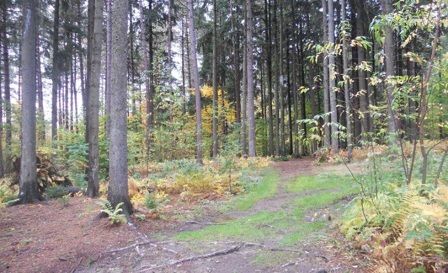 Earl Cardot Eastside Overland Trail, Gerry, NY   Chautauqua County
